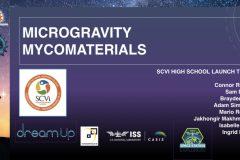 DreamUp-Launch-Team-Myco-Materials-Presentation.1
