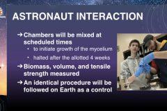 DreamUp-Launch-Team-Myco-Materials-Presentation.7