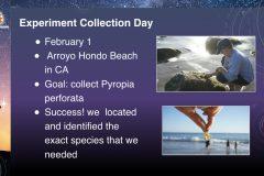 DreamUp-Launch-Team-Pyropia-Presentation-3
