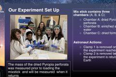 DreamUp-Launch-Team-Pyropia-Presentation-5