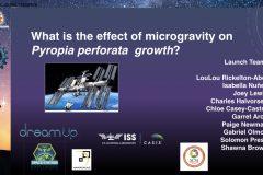 DreamUp-Launch-Team-Pyropia-Presentation1